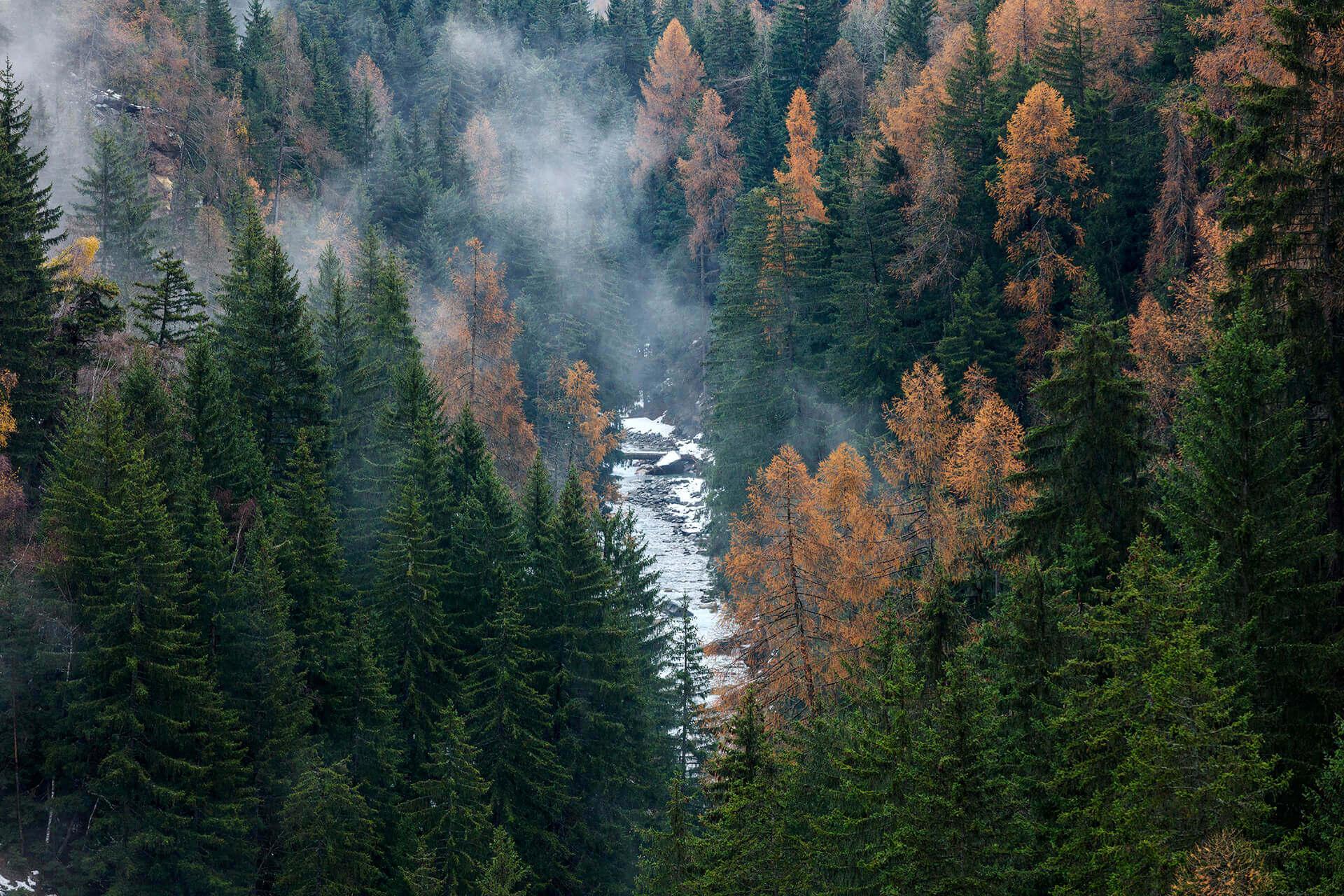 Le fleuve Rhône, Km 29 Canton du Valais, Gorge de La Lama