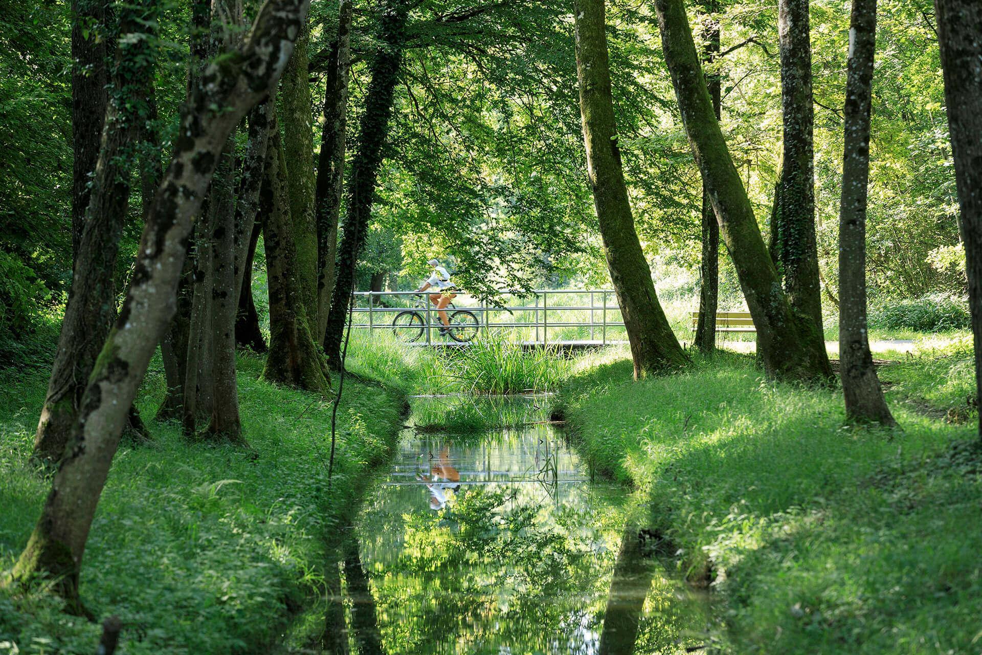 Le fleuve Rhône, Km 166 Canton de Vaud, Noville