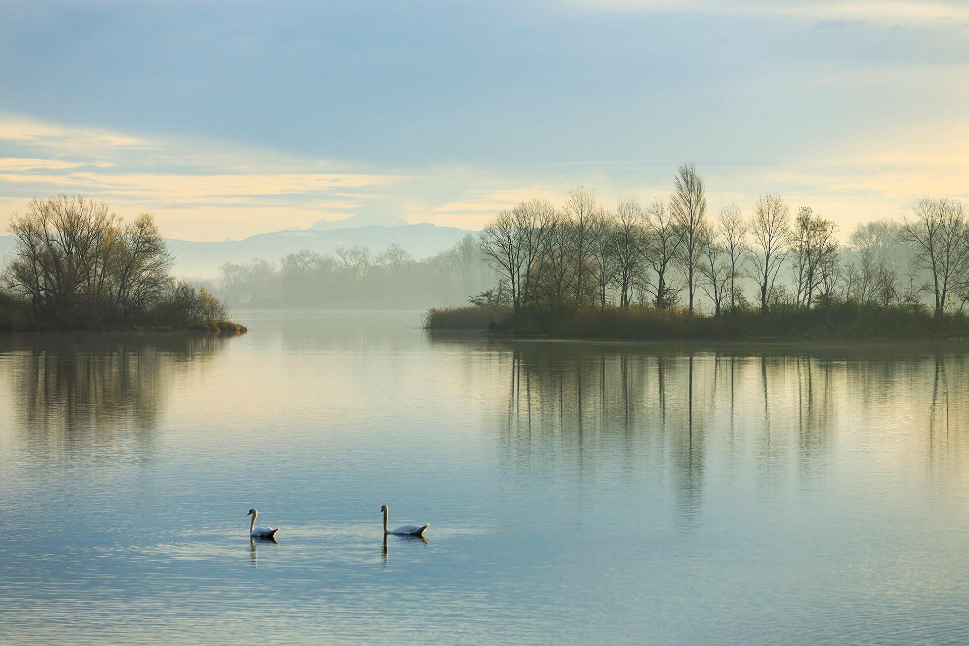 Le fleuve Rhône, Km 436 Rhône, Vaulx-en-Velin, Grand Parc Miribel Jonage, Lac des Eaux Bleues